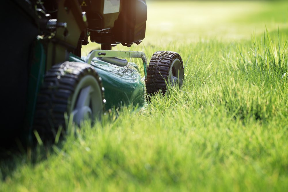mowing-the-grass