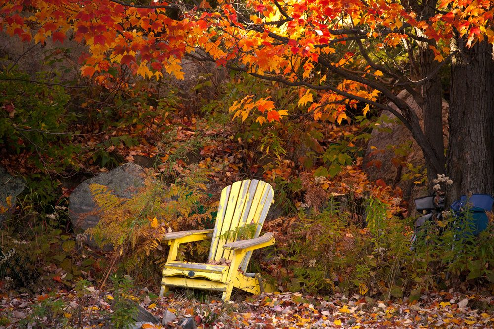 autumn-in-canada-beautiful-autumn-scene-in-ontario-province