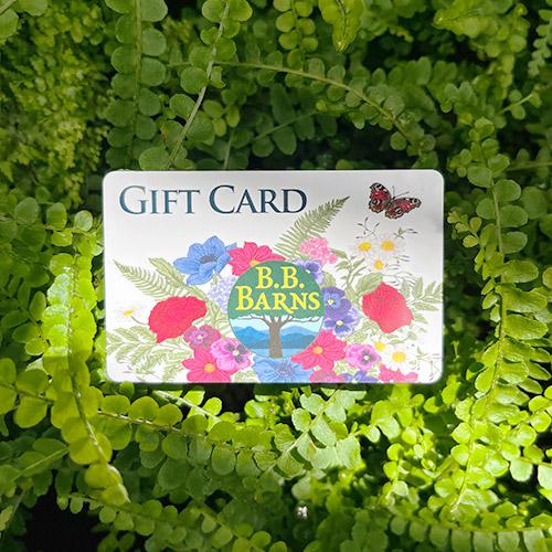 B.B. Barns gift cards
